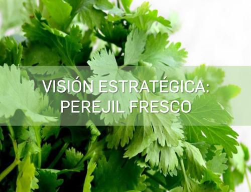 Visión Estrategica – Perejil Fresco